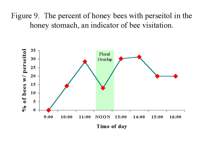 Figure #9 Graph of bee visitation